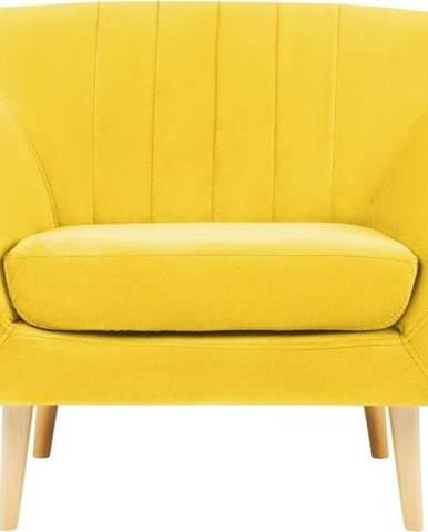 Žluté sametové křeslo Mazzini Sofas Sardaigne