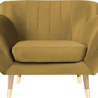 Sametové křeslo ve zlaté barvě Mazzini Sofas Benito