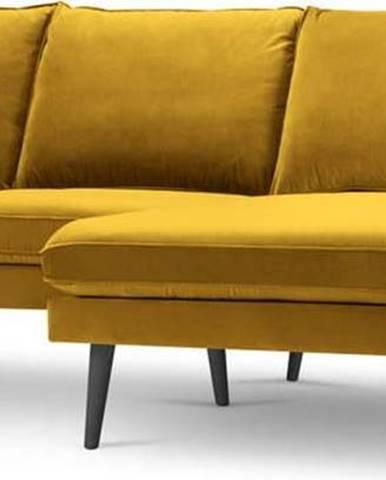 Žlutá sametová rohová pohovka s černými nohami Kooko Home Lento, pravý roh