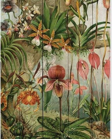 Nástěnná dekorace z borovicového dřeva Madre Selva Jungle Flowers, 60 x 40 cm