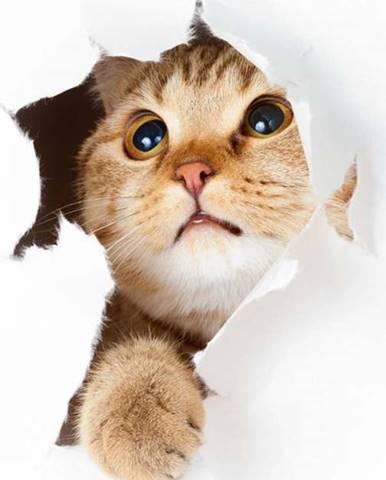 Samolepka Ambiance Cat in Hole