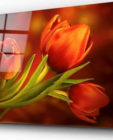 Skleněný obraz Insigne Tulips