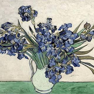 Reprodukce obrazu Vincenta van Gogha - Irises 2, 40 x 26 cm
