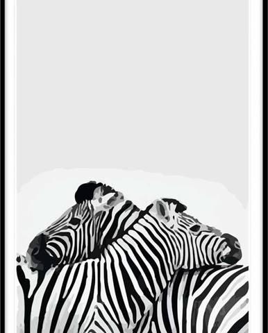 Obraz Piacenza Art Two Zebra,30x20cm