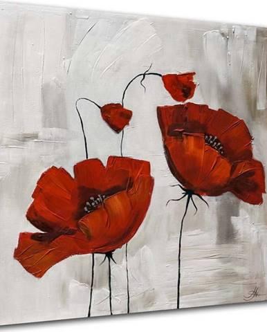 Obraz Styler Glasspik Flower Poppy Bloom, 20 x 20 cm