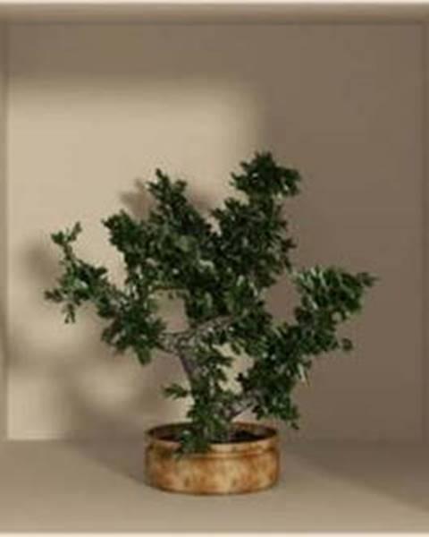 Ambiance Sada 3 samolepek s 3D efektem Ambiance Small Trees