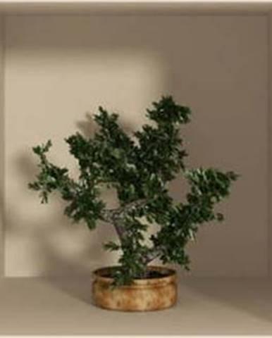 Sada 3 samolepek s 3D efektem Ambiance Small Trees