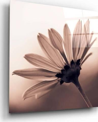 Skleněný obraz Insigne Flower,40 x40cm