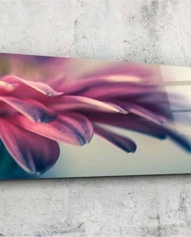 Skleněný obraz Insigne Pelmelo, 92x36cm