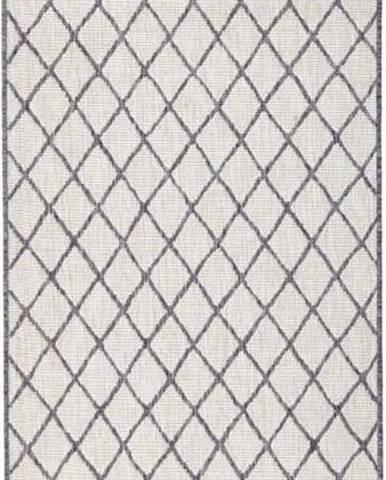 Šedo-krémový venkovní koberec Bougari Malaga, 80x250 cm