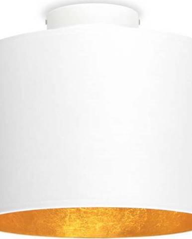 Bílé stropní svítidlo s detailem ve zlaté barvě Sotto Luce MIKA S,⌀25cm