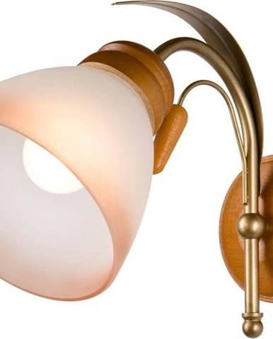 Nástěnná lampa Lamkur Tulipan