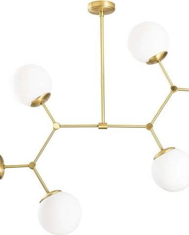 Závěsné svítidlo pro 6 žárovek ve zlato-bílé barvě Opviq lights Damar