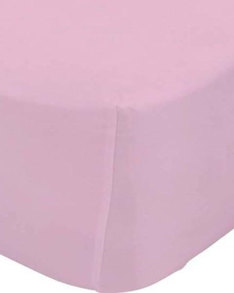 Happy Friday Basic Růžové elastické prostěradlo z čisté bavlny Happy Friday Basic, 90x200cm