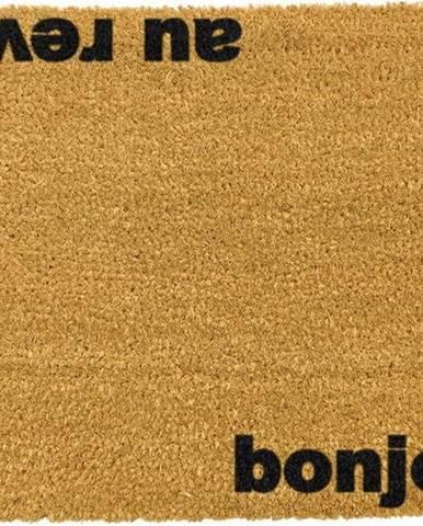 Rohožka z přírodního kokosového vlákna Artsy Doormats Bonjour Au Revoir,40x60cm