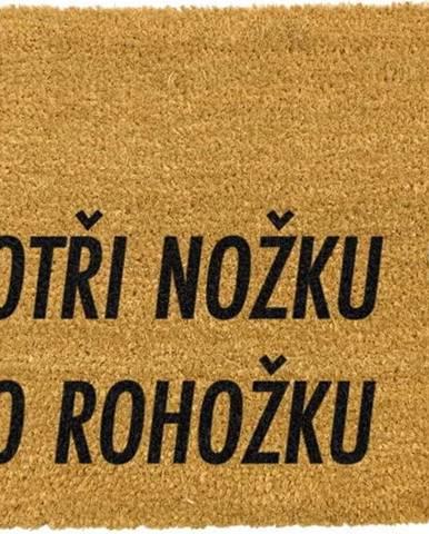 Rohožka z přírodního kokosového vlákna Artsy Doormats Otři Nožku,40x60cm