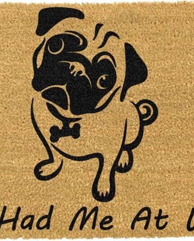 Rohožka z přírodního kokosového vlákna Artsy Doormats You Had Me At Woof Pug,40x60cm