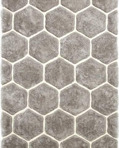 Šedý koberec Think Rugs Noble House, 120x170cm