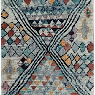Koberec Asiatic Carpets Aryn, 120 x 170 cm