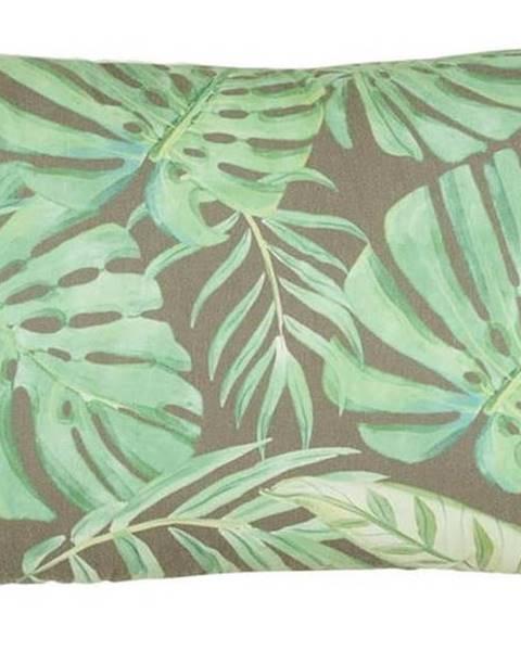 Mike & Co. NEW YORK Povlak na polštář Mike&Co.NEWYORK Jungle, 31 x 50 cm