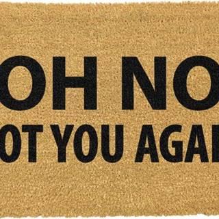 Rohožka z přírodního kokosového vlákna Artsy Doormats Not You Again,40x60cm