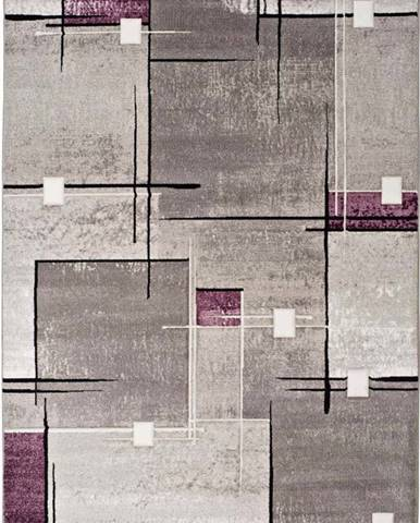 Šedo-fialový koberec Universal Detroit, 80x150cm