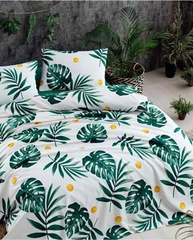 Set bavlněného přehozu přes postel, prostěradla a 2 povlaků na polštář Monstera Green, 200 x 235 cm