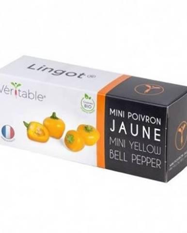 Bio mini žlutá paprika pro smart květináče véritable