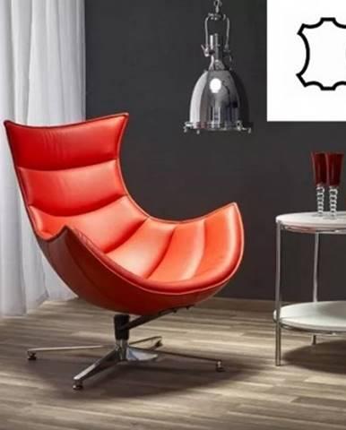 Samostatné křeslo kožené křeslo luxor červená
