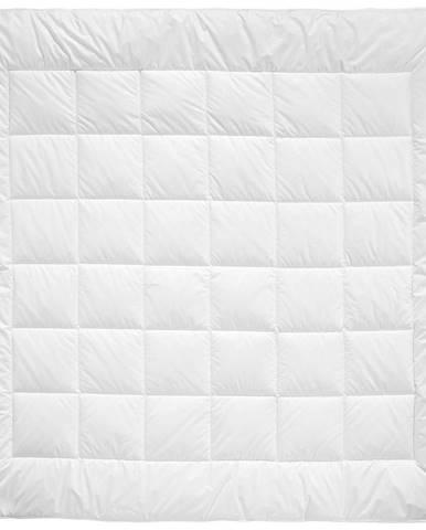 Billerbeck PŘIKRÝVKA CELOROČNÍ, 200/200 cm, polyester - bílá