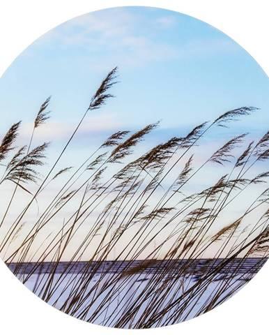 Monee OBRAZ NA SKLE, krajina & příroda, 70 cm - modrá