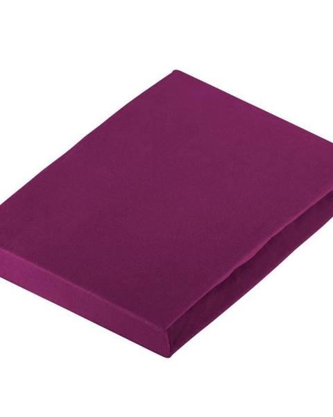 Novel Novel PROSTĚRADLO NAPÍNACÍ, žerzej, fialová, 180/200 cm - fialová