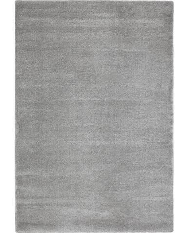 Novel TKANÝ KOBEREC, 60/110 cm, barvy stříbra - barvy stříbra