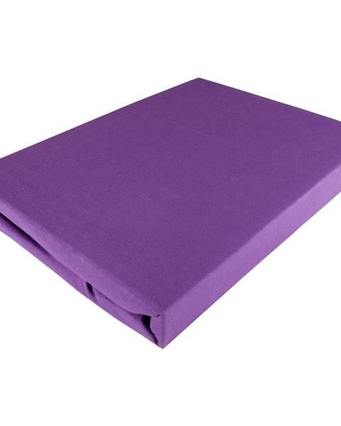 Fleuresse Fleuresse PROSTĚRADLO NAPÍNACÍ, žerzej, fialová, 180/200 cm - fialová