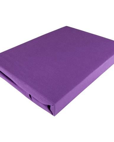 Fleuresse PROSTĚRADLO NAPÍNACÍ, žerzej, fialová, 100/200 cm - fialová