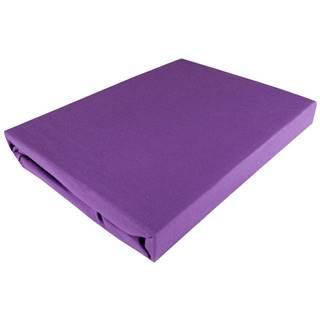 Fleuresse PROSTĚRADLO NAPÍNACÍ, žerzej, fialová, 180/200 cm - fialová