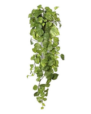 UMĚLÁ ROSTLINA břečťan 80 cm - zelená