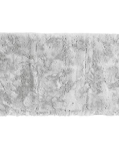 Esposa PŘEDLOŽKA KOUPELNOVÁ, 60/100 cm - barvy stříbra