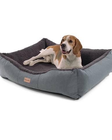 Brunolie Emma, pelech pro psa, koš pro psa, možnost praní, protiskluzový, prodyšný, oboustranná matrace, velikost M (80 x 20 x 70 cm)