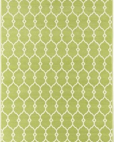 Zelený venkovní koberec Floorita Trellis, 160 x 230 cm