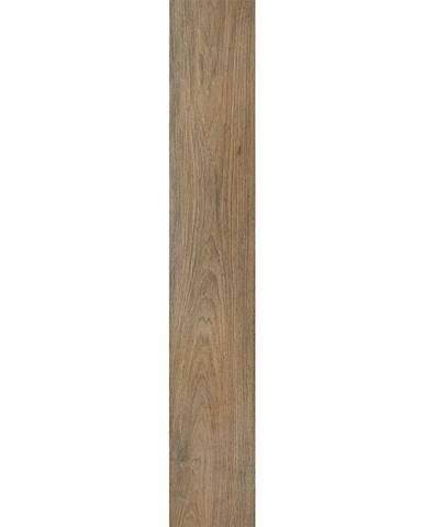 Dlažba Hardwood Cerezo 20/120