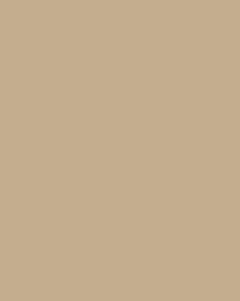 BAUMIT Silikonová omítka Baumit Startop 1,5 mm 25 kg – odstín 0185