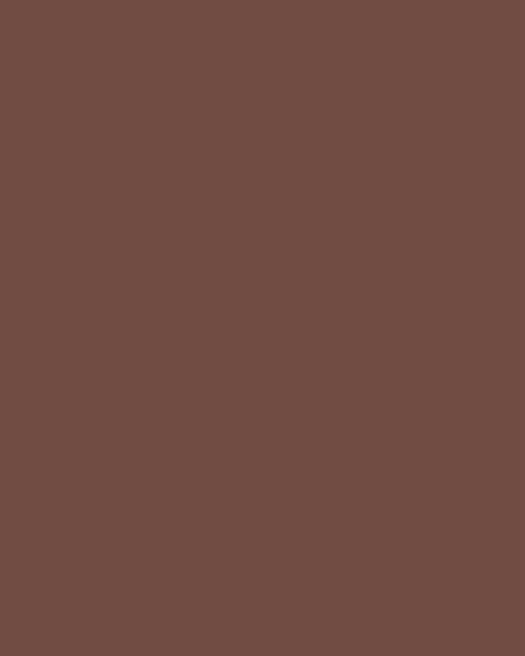 BAUMIT Silikonová omítka Baumit Startop 1,5 mm 25 kg – odstín 0411