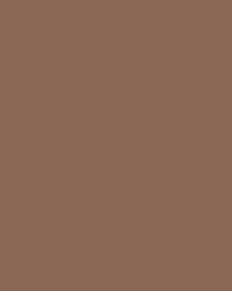 BAUMIT Silikonová omítka Baumit Startop 2,0 mm 25 kg – odstín 0372