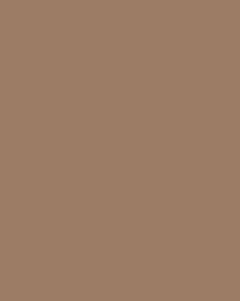 BAUMIT Silikonová omítka Baumit Startop 2,0 mm 25 kg – odstín 0373