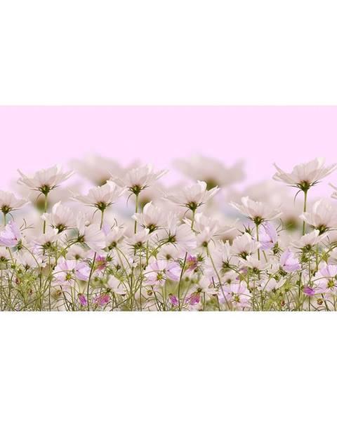 INNA Dekor skleněný - bílé květy 1 30/60