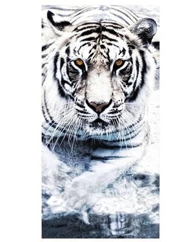 Dekor skleněný - tygr 30/60