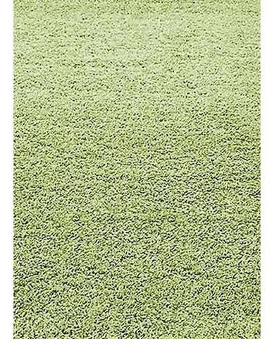 Koberec Shaggy Dream 1,33/1,9 5229 Zelený