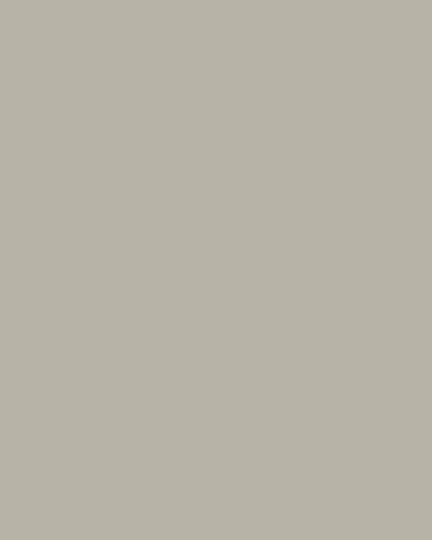 BAUMIT Silikonová omítka Baumit Startop 2,0 mm 25 kg – odstín 0936