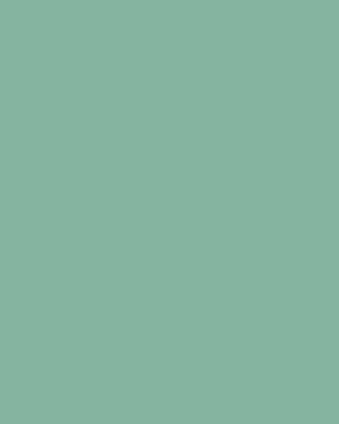 BAUMIT Silikonová omítka Baumit Startop 2,0 mm 25 kg – odstín 1003